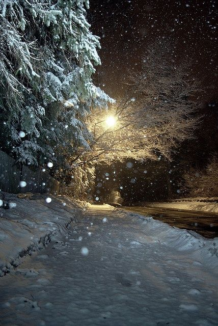 Falling Snow at Night