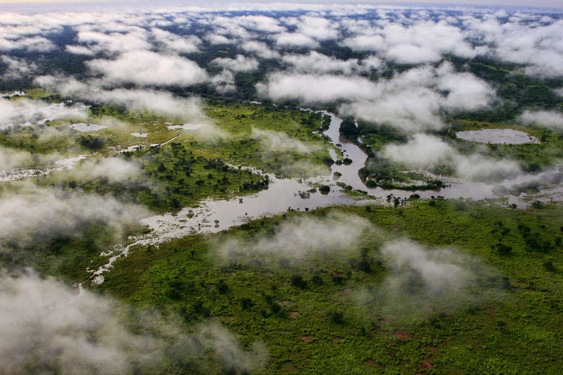 10 Places to See Before They're Gone |Congo Basin