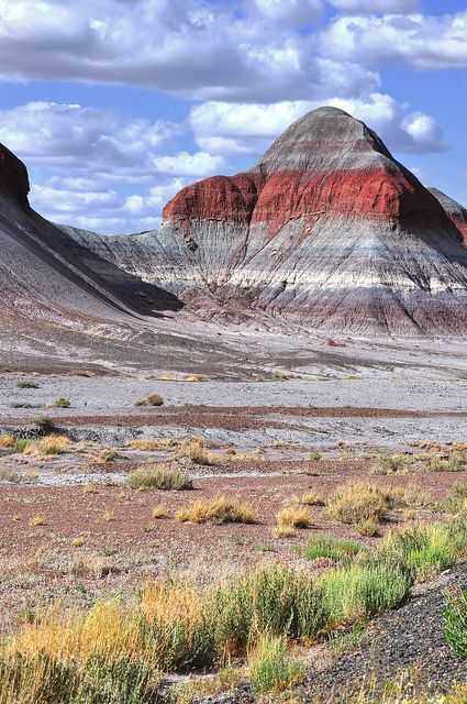 """The Tepees"" at Petrified Forest National Park, Arizona"